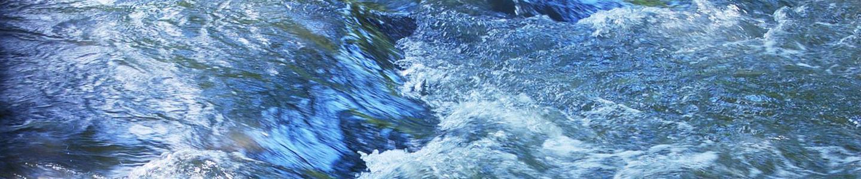 Coal Ash Resources - Dan River Basin Association - Dan River