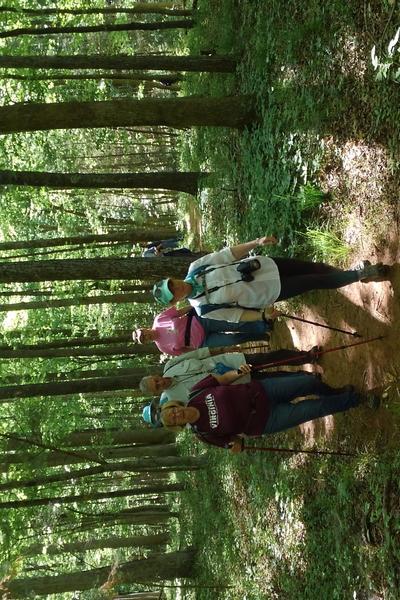 Nov FSO - Hike at Great Blue Heron  Loop Trail