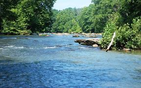 Places That Connect: Gravely Nature Preserve, Henry County