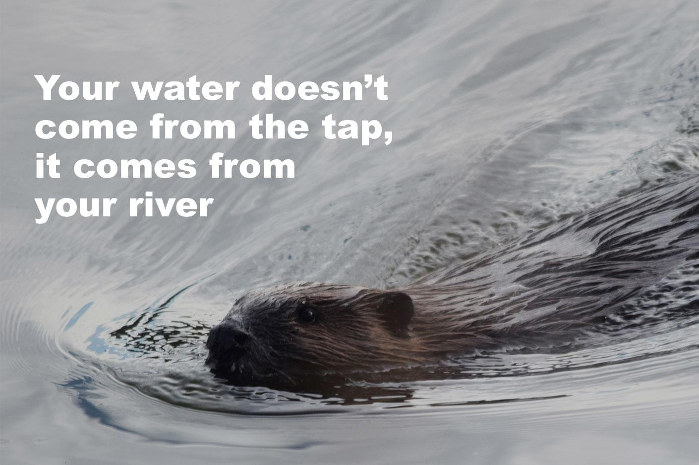 Your Water Doesn't Comes From The Tap