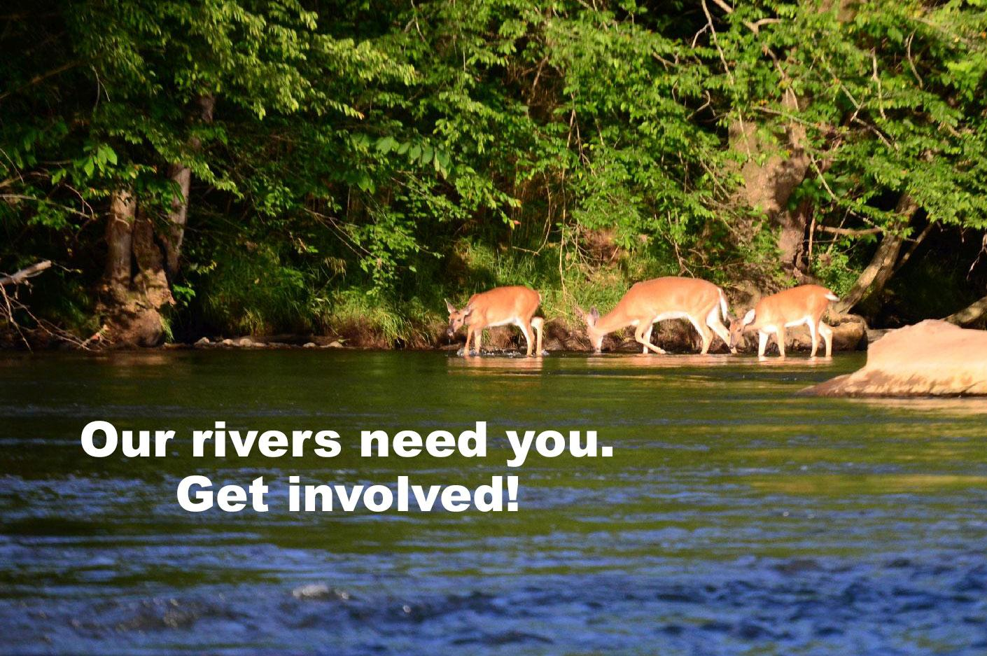 Our Rivers Need You. Get Involved!