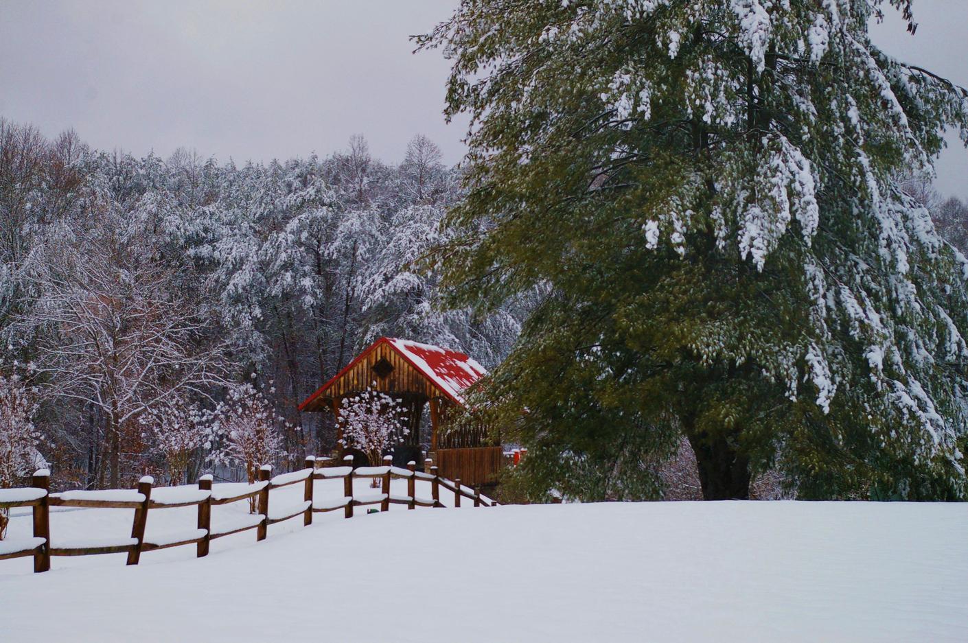 winter2017d