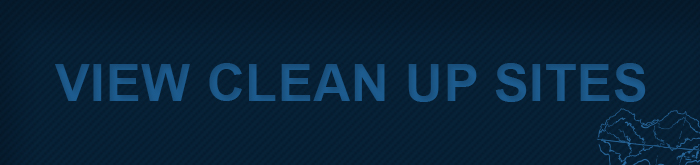 Clean up sites